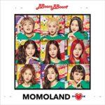 【ゆるレビュー】SUPER JUNIOR、MOMOLAND、BTSのオススメ楽曲